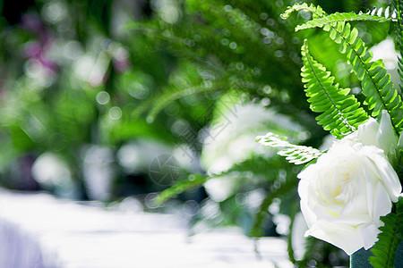 宴会餐桌上的兰花 白玫瑰 绿叶图片