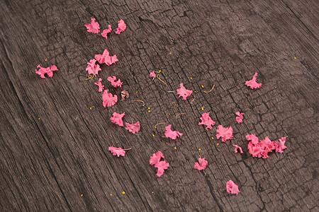 花瓣和木质纹理背景图片