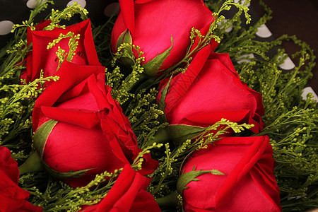 一束玫瑰花图片