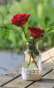 玻璃瓶里的玫瑰图片