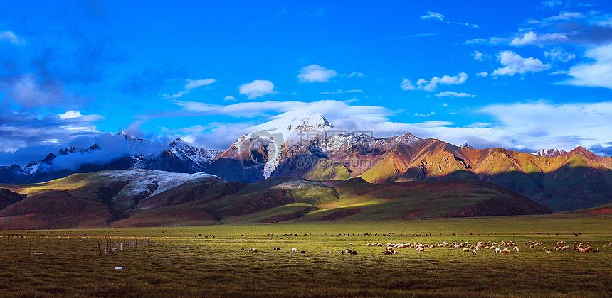 西藏羊八井图片