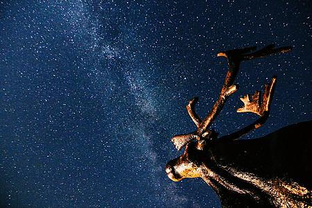 星空下的麋鹿雕像图片