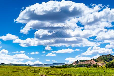 乌兰布统草原风光图片