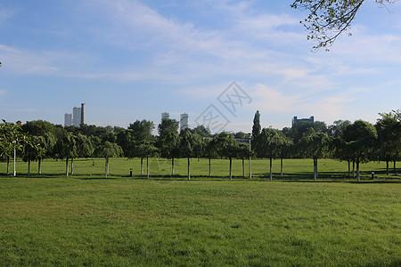 公园一角图片