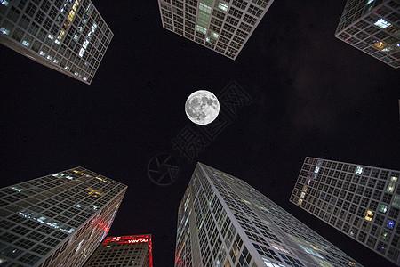中秋的月圆图片