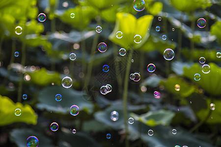 丰富多彩肥皂泡沫图片
