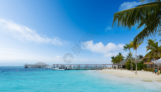 马尔代夫风情图片