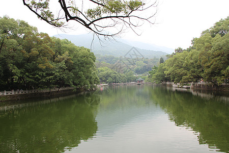 山水大湖山林树木图片