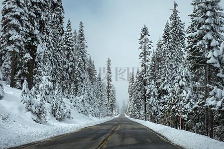 下雪后的风景图片