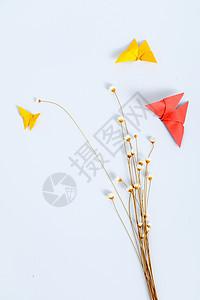 干花纸质蝴蝶设计摆设背景图片