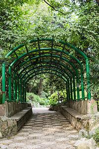 树林廊架休息公园自然环境图片