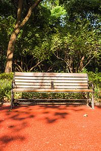 阳光椅子休息公园自然环境图片