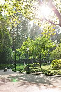 阳光行人散步公园自然环境图片
