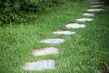 公园绿色草地上的石板小路图片