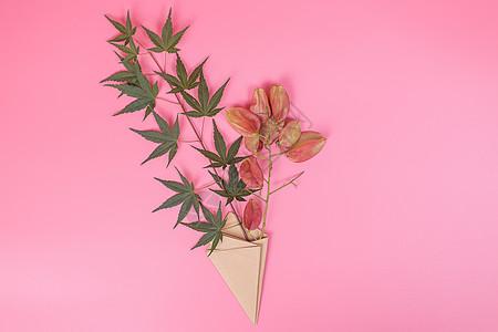 清新折纸包装枫叶红果摆拍图片