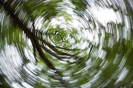 绿色树叶虚化背景素材图片