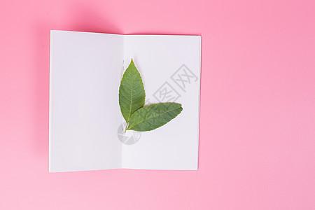 清新文艺树叶创意摆拍图片