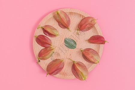 清新木盘红果树叶创意摆拍图片
