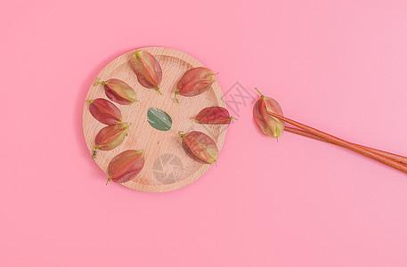 清新木盘红果种子夹起摆拍图片