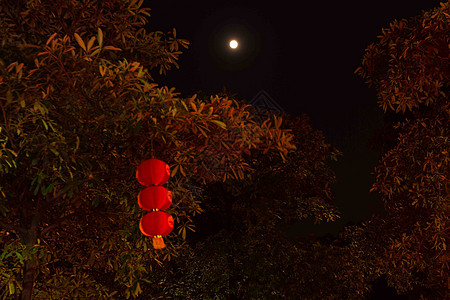 中秋月亮图片