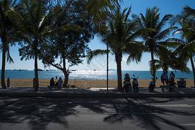 棕榈树 沙滩海边图片