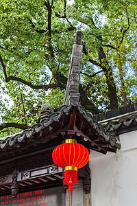 蓝天树林红灯笼喜庆国庆图片