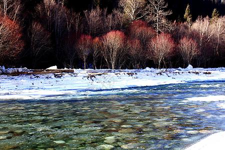 冬日纯净的湖底图片