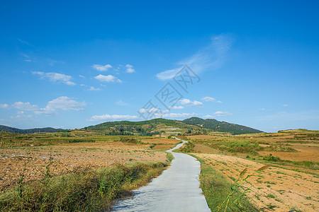 乡村 田野图片