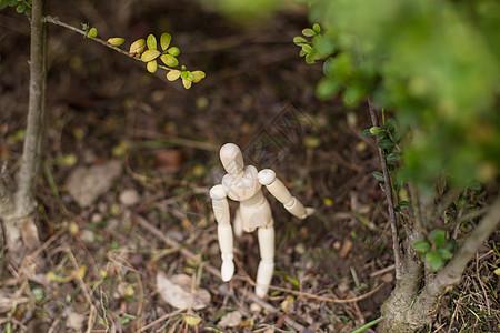 清新文艺人偶树丛探索抬头图片