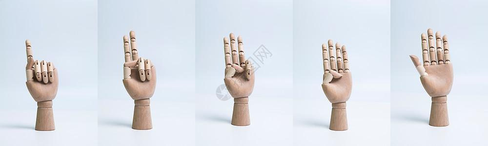 关节变形木制手掌模型图片