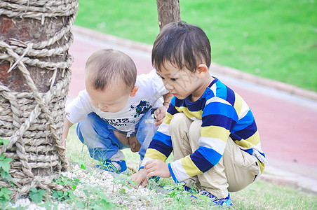 一起玩耍的宝宝图片