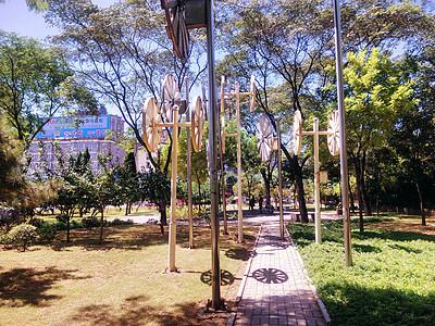 街心公园图片
