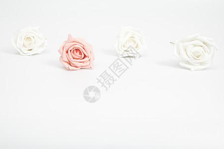 浪漫玫瑰留白设计背景图片