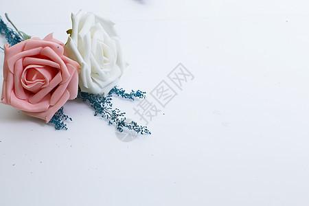 白色背景下的花图片