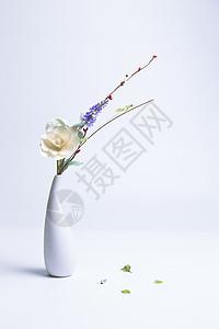 花瓶中的花图片