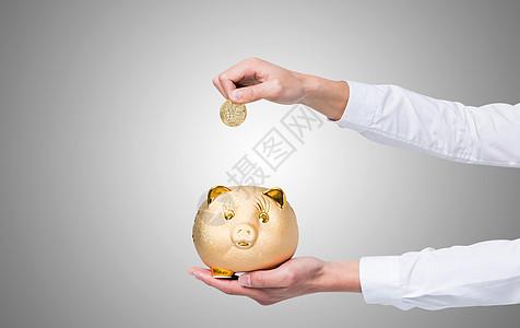 存钱的储蓄猪图片