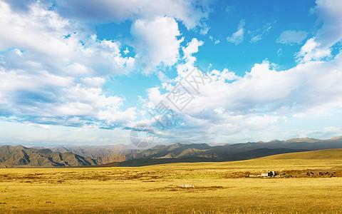 空旷草原图片