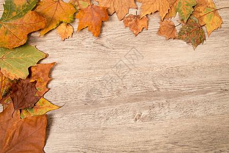 复古秋叶木底板设计素材图片