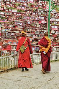 佛学院的喇嘛们图片