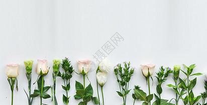 母亲节康乃馨鲜花花束背景图片