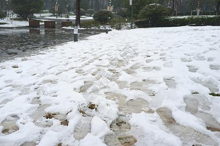 南京雪景图片