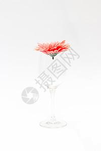 花与玻璃杯图片