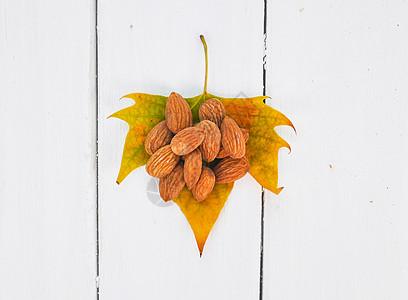 树叶上的坚果干果图片