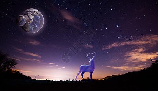 星空小鹿图片