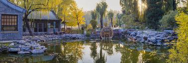 秋意公园图片