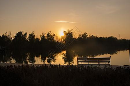 夕阳下的秋意图片
