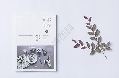 书与叶子ins风格图片