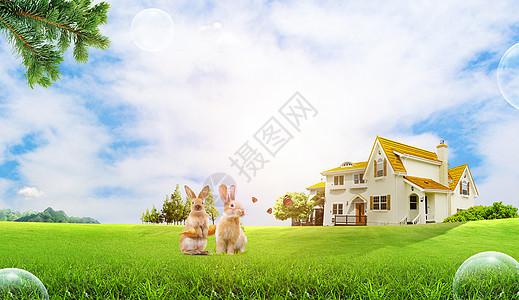 美丽的家园图片