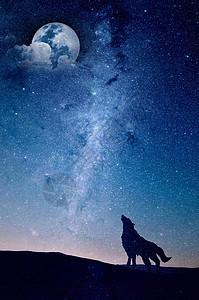 夜空下狼的剪影图片