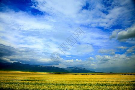 高飞青海摄影图片